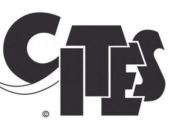 CITES adopta exención de restricciones de palo de rosa para instrumentos musicales